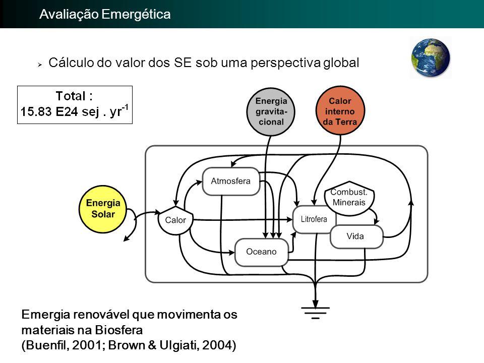  Cálculo do valor dos SE sob uma perspectiva global Emergia renovável que movimenta os materiais na Biosfera (Buenfil, 2001; Brown & Ulgiati, 2004) I