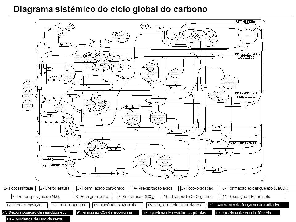 Diagrama sistêmico do ciclo global do carbono 1- Fotossíntese2- Efeito estufa3- Form. ácido carbônico4- Precipitação ácida5- Foto-oxidação6- Formação