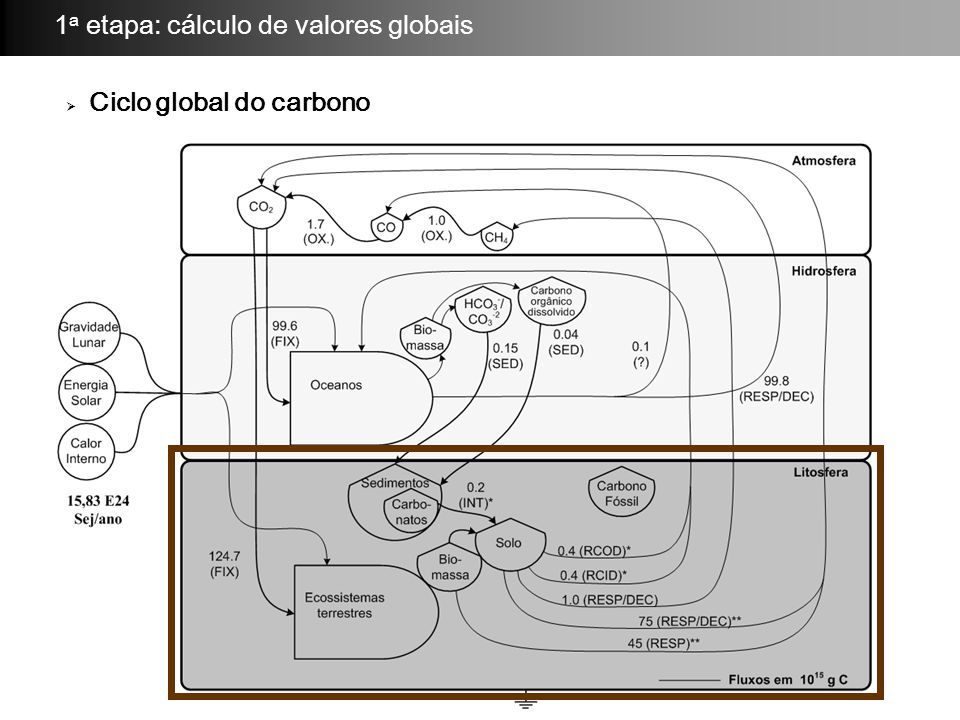  Ciclo global do carbono 1 a etapa: cálculo de valores globais