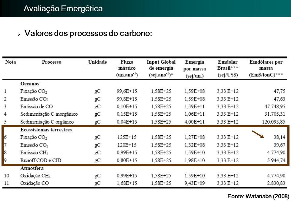  Valores dos processos do carbono: Importância da avaliação: Avaliação Emergética Fonte: Watanabe (2008)
