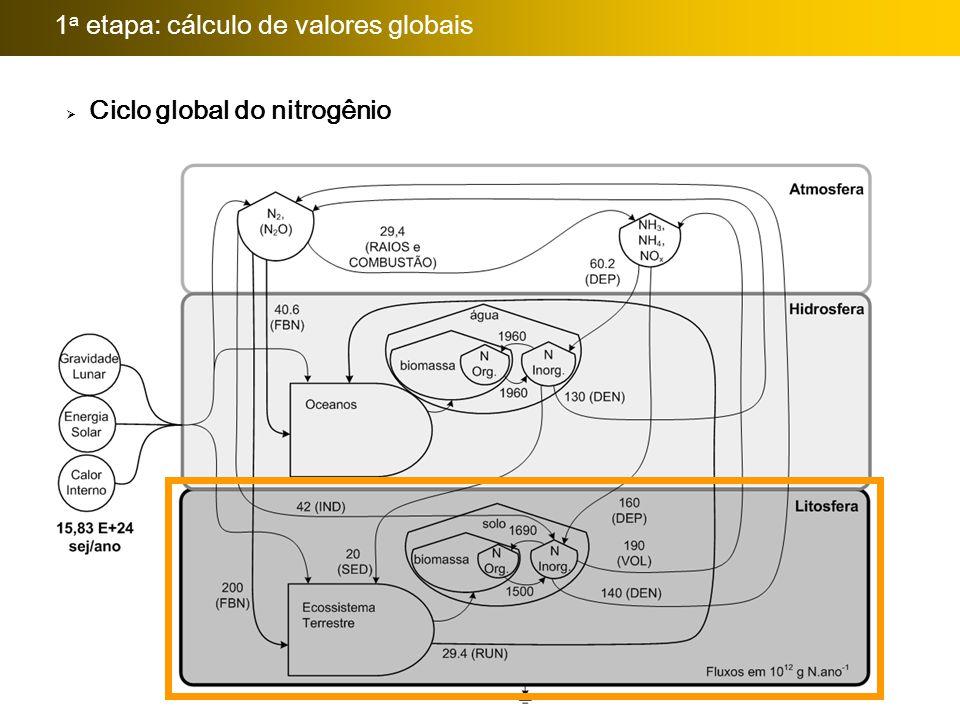 Importância da avaliação:  Ciclo global do nitrogênio 1 a etapa: cálculo de valores globais