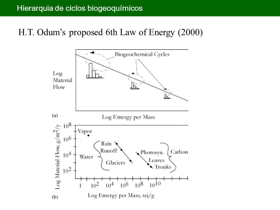 H.T. Odum's proposed 6th Law of Energy (2000) Hierarquia de ciclos biogeoquímicos