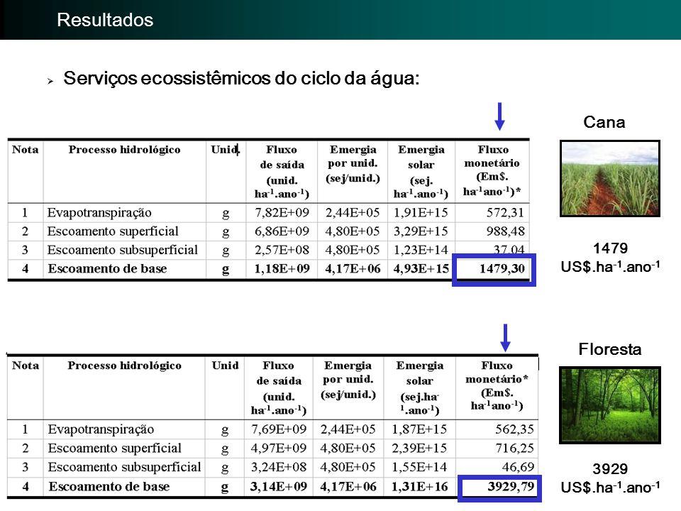 Importância da avaliação: Avaliação EmergéticaImportância da avaliação: Resultados  Serviços ecossistêmicos do ciclo da água: Cana Floresta 1479 US$.