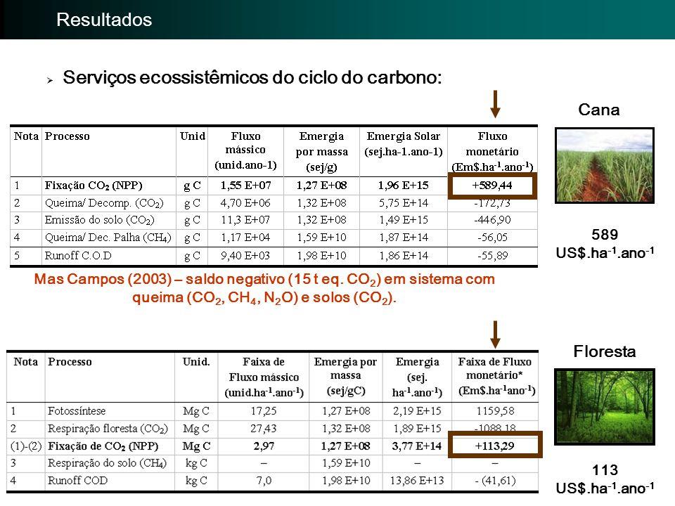 Importância da avaliação: Avaliação EmergéticaImportância da avaliação: Resultados  Serviços ecossistêmicos do ciclo do nitrogênio Cana Floresta - 4082 US$.ha -1.ano -1 -1229 US$.ha -1.ano -1