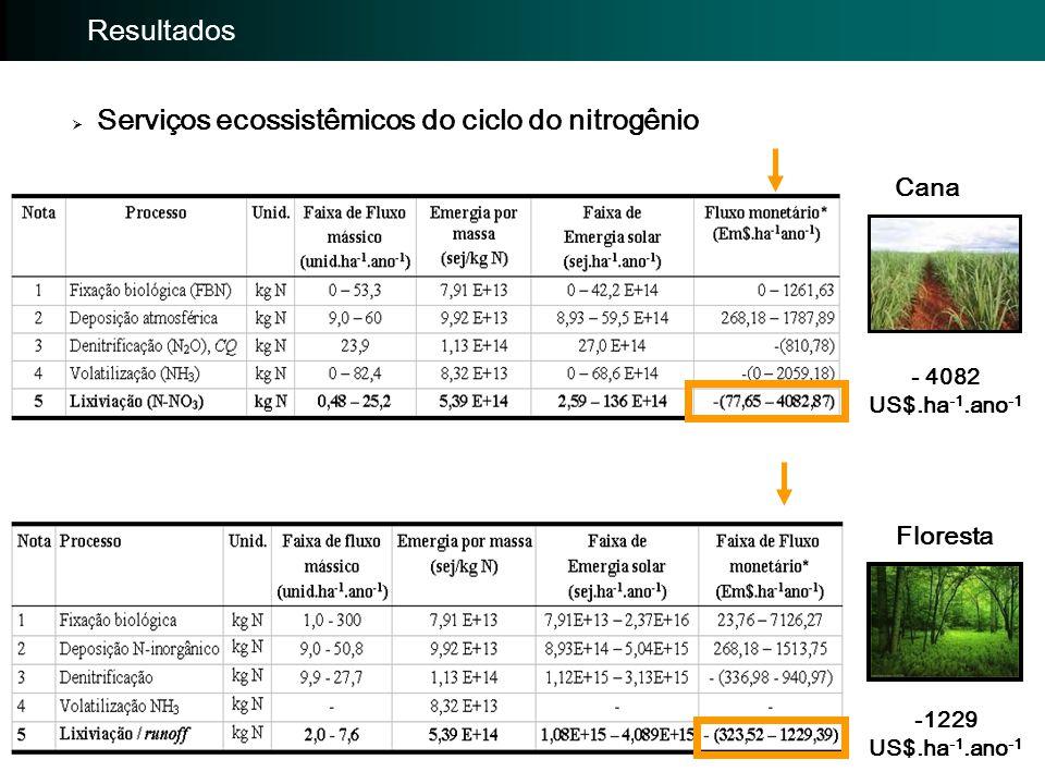Importância da avaliação: Avaliação EmergéticaImportância da avaliação: Resultados  Serviços ecossistêmicos do ciclo do nitrogênio Cana Floresta - 40