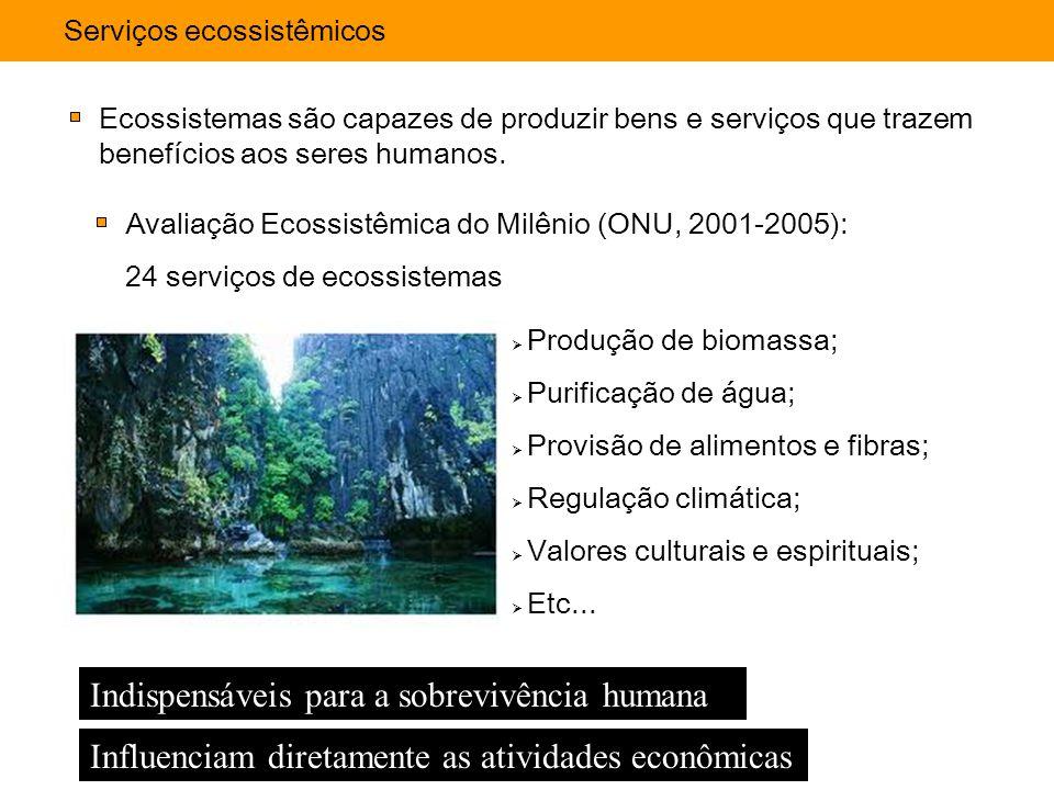 Serviços ecossistêmicos Ecossistemas são capazes de produzir bens e serviços que trazem benefícios aos seres humanos.  Produção de biomassa;  Purifi
