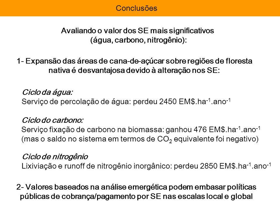 Importância da avaliação: Avaliação EmergéticaImportância da avaliação: Conclusões Avaliando o valor dos SE mais significativos (água, carbono, nitrog