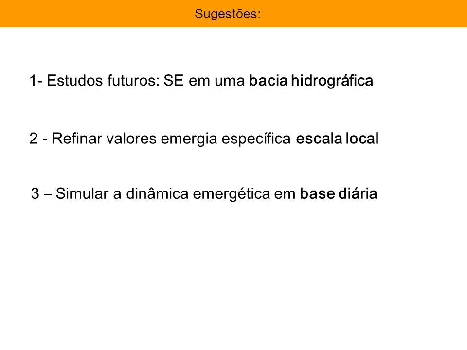 Importância da avaliação: Avaliação EmergéticaImportância da avaliação: Sugestões: 1- Estudos futuros: SE em uma bacia hidrográfica 2 - Refinar valore