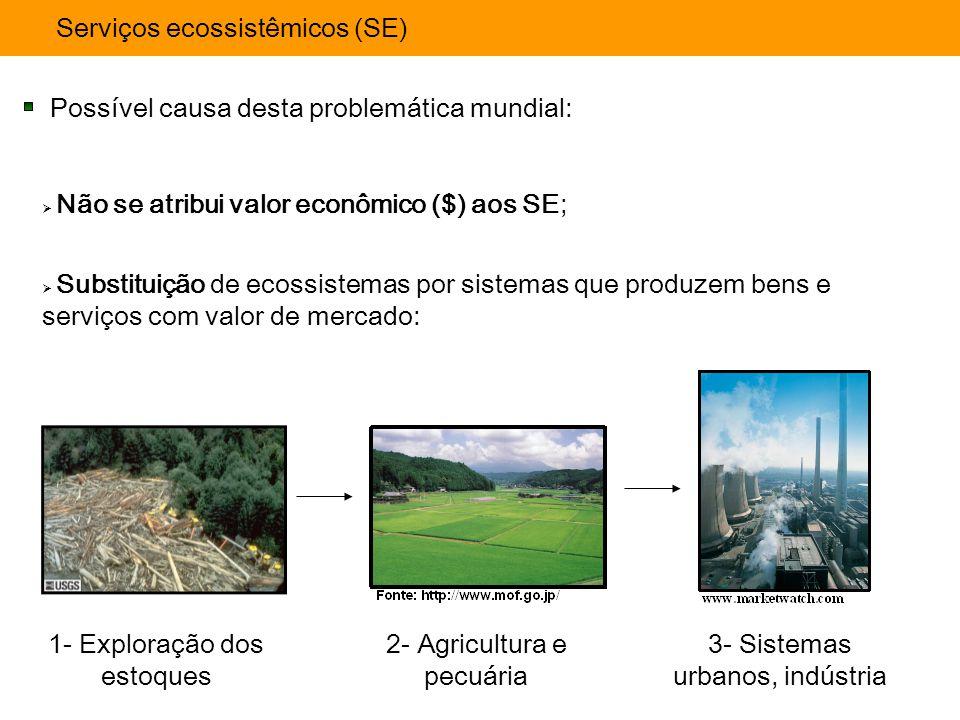 Serviços ecossistêmicos (SE) Possível causa desta problemática mundial:  Não se atribui valor econômico ($) aos SE;  Substituição de ecossistemas po