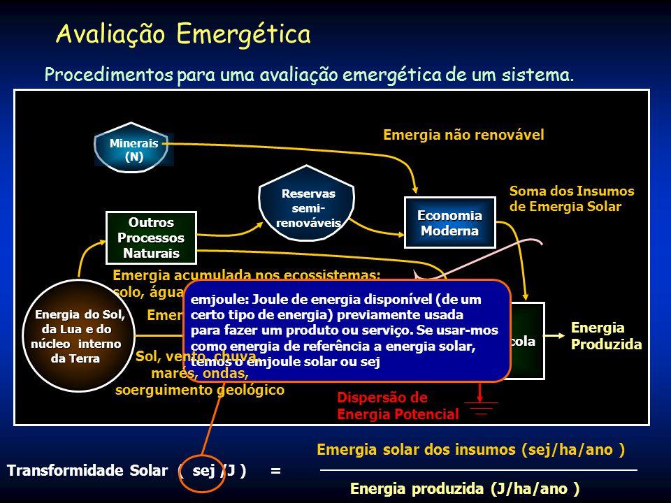 1. Elaboração do Diagrama Nitrogênio da Atmosfera Nutrientes Rocha Subsolo Biodiversidade Regional Chuva Vento Sol Benefi- ciamento Reserva Florestal