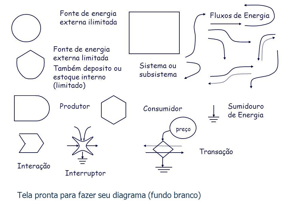 Fluxo de Energia Produtor Fonte de energia externa ilimitada Estoque interno Transação preç o Sumidouro de Energia Fonte de energia limitada Consumido