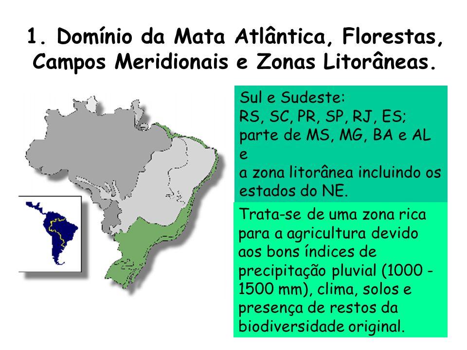 1. Domínio da Mata Atlântica, Florestas, Campos Meridionais e Zonas Litorâneas. Trata-se de uma zona rica para a agricultura devido aos bons índices d