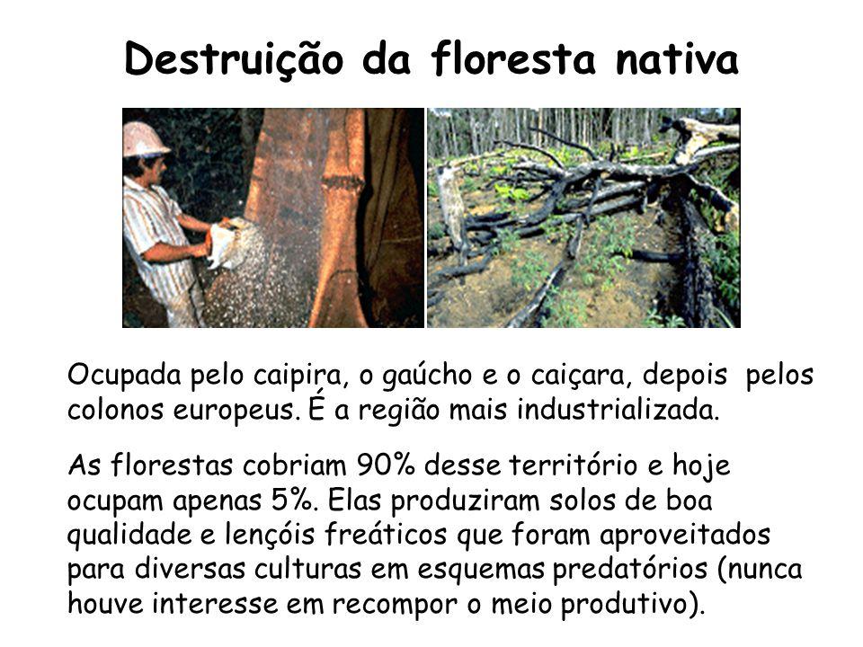 Destruição da floresta nativa Ocupada pelo caipira, o gaúcho e o caiçara, depois pelos colonos europeus. É a região mais industrializada. As florestas
