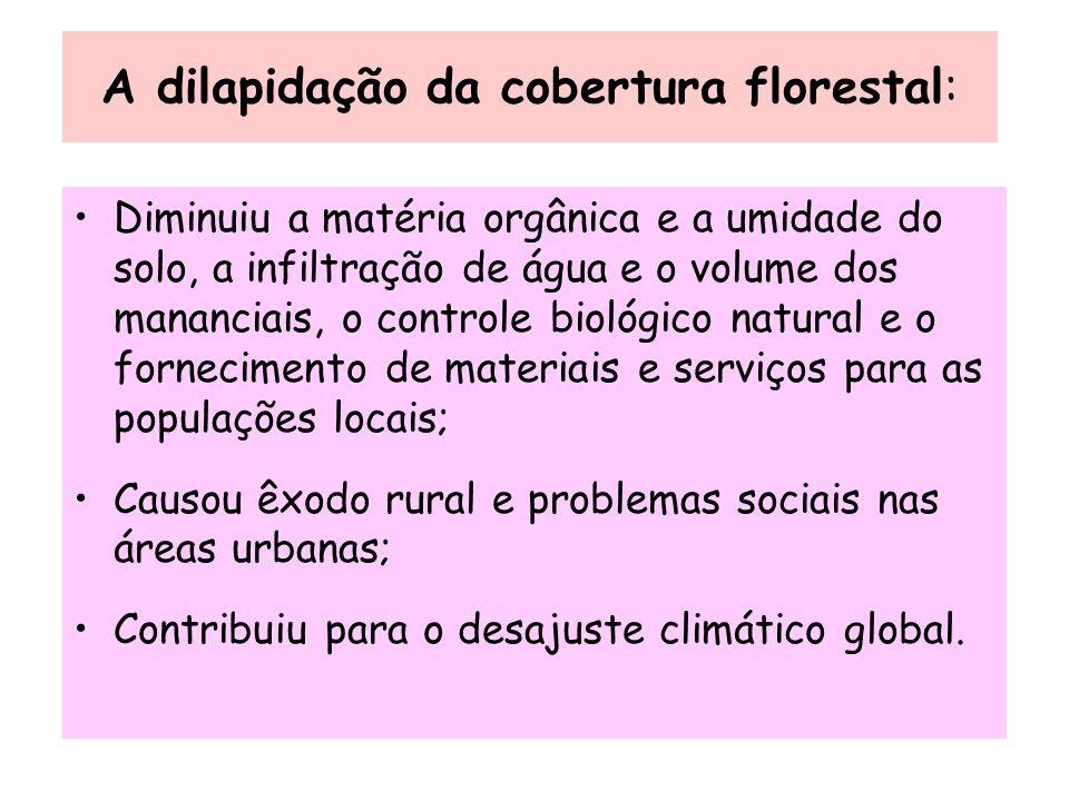 A dilapidação da cobertura florestal: Diminuiu a matéria orgânica e a umidade do solo, a infiltração de água e o volume dos mananciais, o controle bio