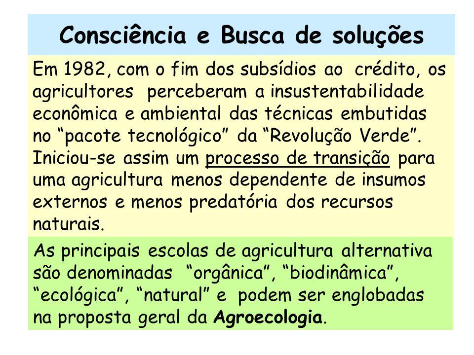 Consciência e Busca de soluções Em 1982, com o fim dos subsídios ao crédito, os agricultores perceberam a insustentabilidade econômica e ambiental das
