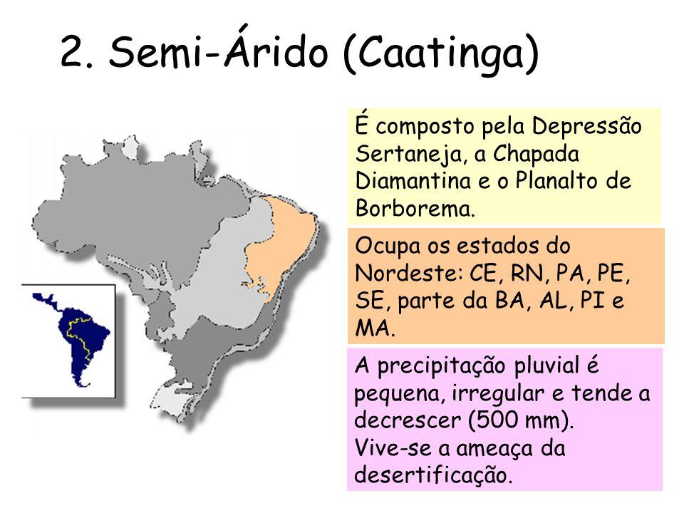 2. Semi-Árido (Caatinga) É composto pela Depressão Sertaneja, a Chapada Diamantina e o Planalto de Borborema. Ocupa os estados do Nordeste: CE, RN, PA