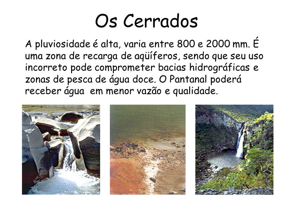 Os Cerrados A pluviosidade é alta, varia entre 800 e 2000 mm. É uma zona de recarga de aqüíferos, sendo que seu uso incorreto pode comprometer bacias