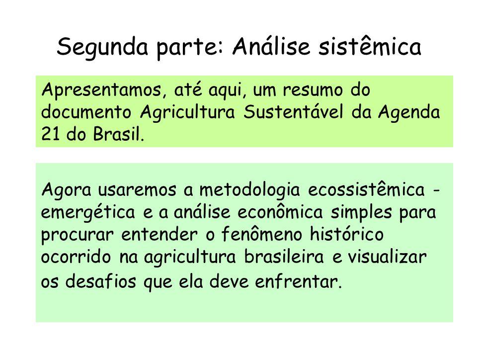 Segunda parte: Análise sistêmica Agora usaremos a metodologia ecossistêmica - emergética e a análise econômica simples para procurar entender o fenôme