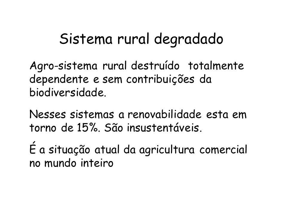 Sistema rural degradado Agro-sistema rural destruído totalmente dependente e sem contribuições da biodiversidade. Nesses sistemas a renovabilidade est