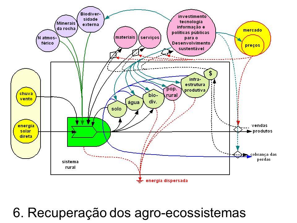 6. Recuperação dos agro-ecossistemas