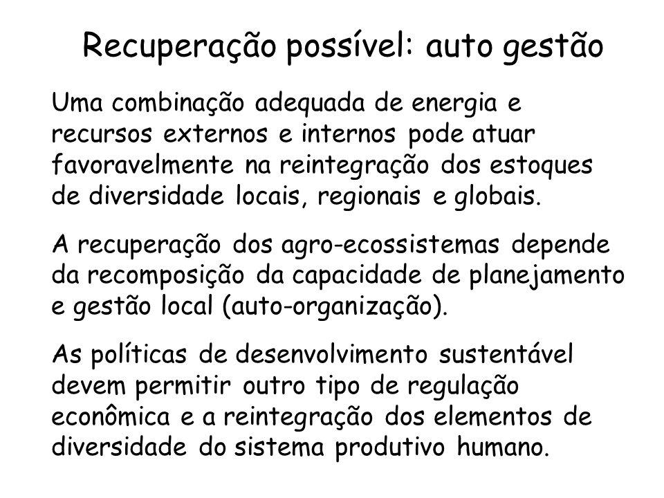 Recuperação possível: auto gestão Uma combinação adequada de energia e recursos externos e internos pode atuar favoravelmente na reintegração dos esto