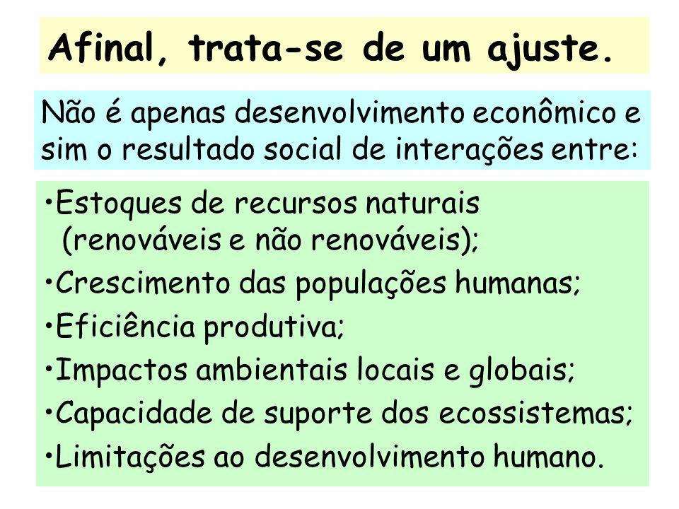 Maiores informações podem ser encontradas no site: www.unicamp.br/fea/ortega/
