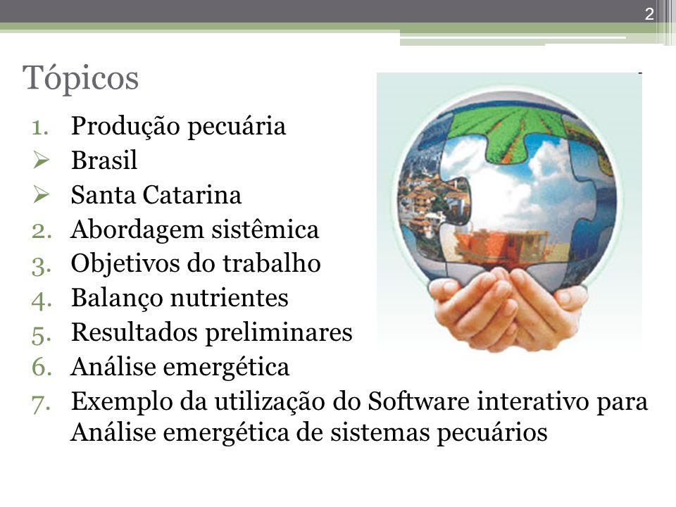 2 Tópicos 1.Produção pecuária  Brasil  Santa Catarina 2.Abordagem sistêmica 3.Objetivos do trabalho 4.Balanço nutrientes 5.Resultados preliminares 6