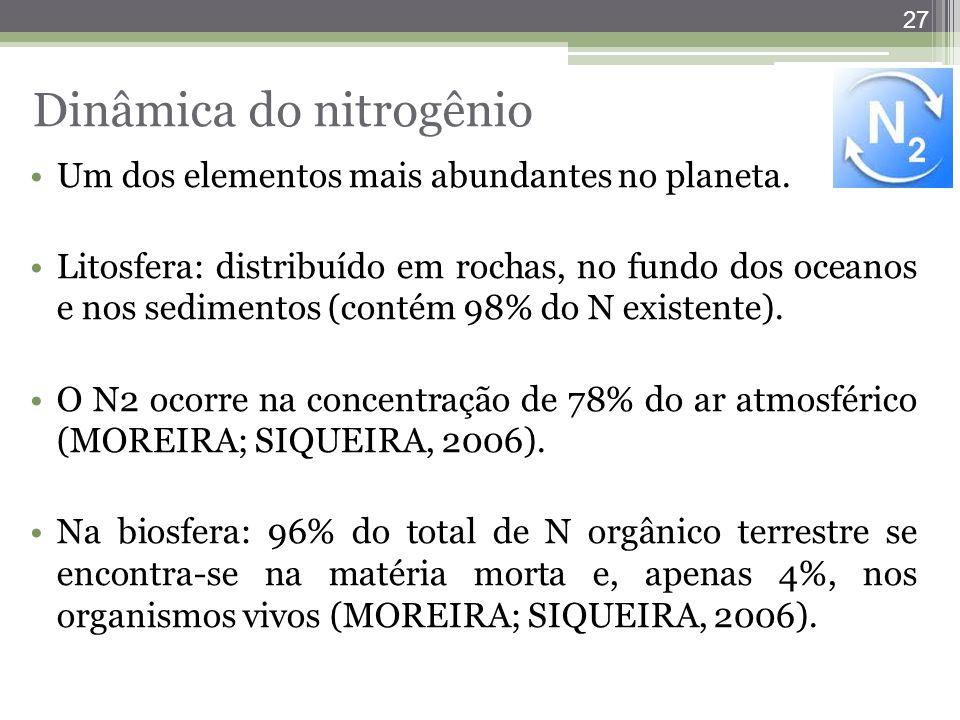 27 Um dos elementos mais abundantes no planeta. Litosfera: distribuído em rochas, no fundo dos oceanos e nos sedimentos (contém 98% do N existente). O