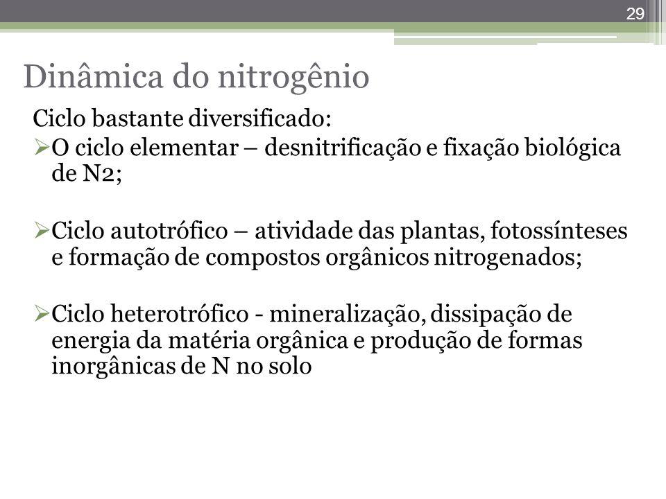 29 Ciclo bastante diversificado:  O ciclo elementar – desnitrificação e fixação biológica de N2;  Ciclo autotrófico – atividade das plantas, fotossí