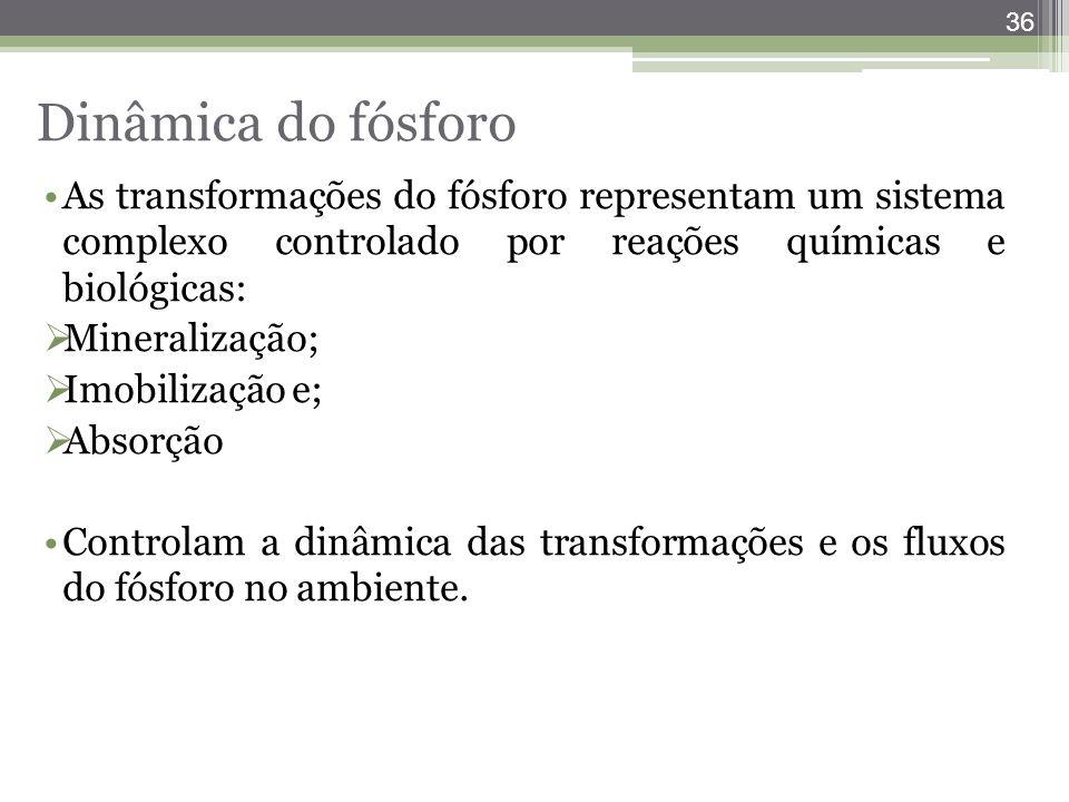 36 As transformações do fósforo representam um sistema complexo controlado por reações químicas e biológicas:  Mineralização;  Imobilização e;  Abs