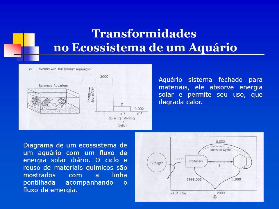 Transformidades no Ecossistema de um Aquário Aquário sistema fechado para materiais, ele absorve energia solar e permite seu uso, que degrada calor. D