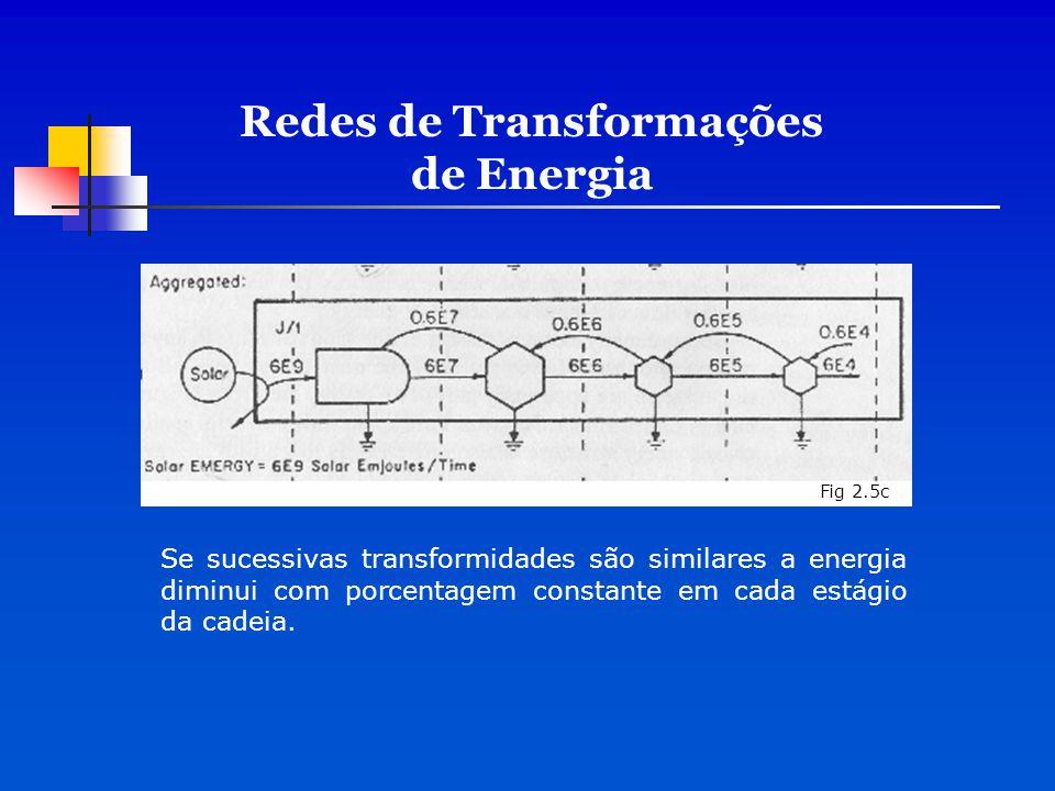 Se sucessivas transformidades são similares a energia diminui com porcentagem constante em cada estágio da cadeia. Fig 2.5c Redes de Transformações de