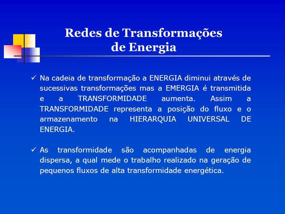 Na cadeia de transformação a ENERGIA diminui através de sucessivas transformações mas a EMERGIA é transmitida e a TRANSFORMIDADE aumenta. Assim a TRAN