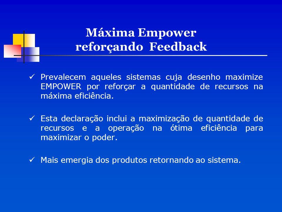 Máxima Empower reforçando Feedback Prevalecem aqueles sistemas cuja desenho maximize EMPOWER por reforçar a quantidade de recursos na máxima eficiênci