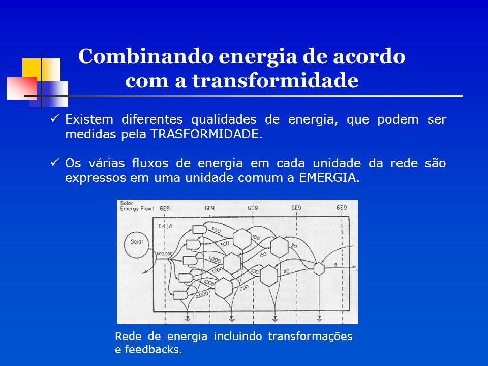 Combinando energia de acordo com a transformidade Existem diferentes qualidades de energia, que podem ser medidas pela TRASFORMIDADE. Os várias fluxos