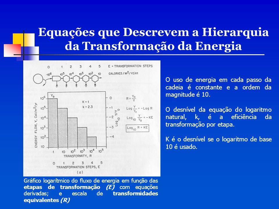Equações que Descrevem a Hierarquia da Transformação da Energia O uso de energia em cada passo da cadeia é constante e a ordem da magnitude é 10. O de
