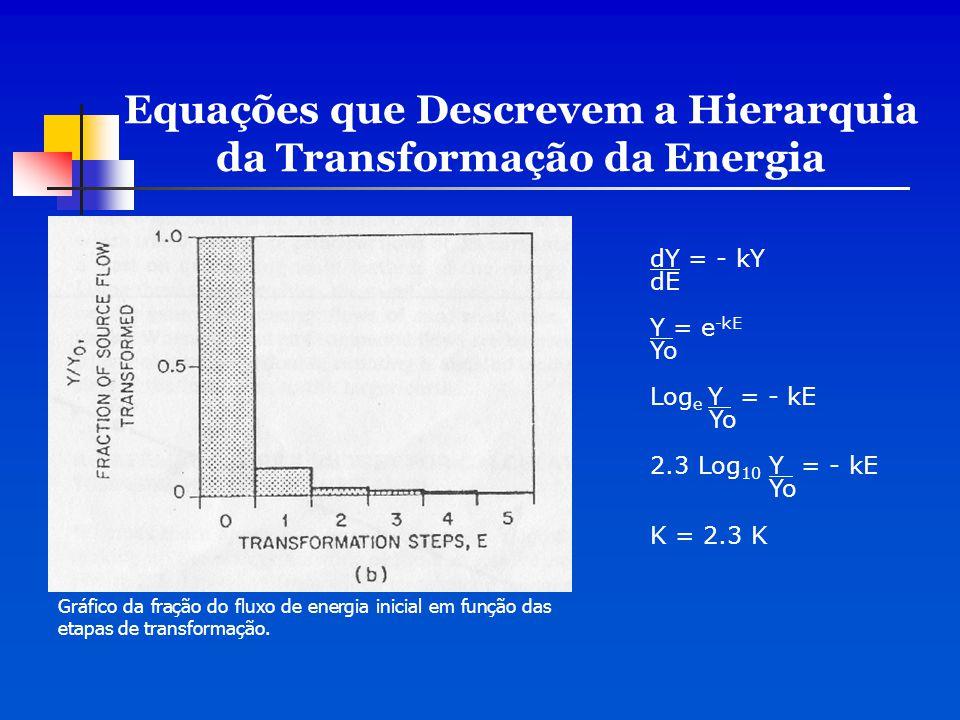 Equações que Descrevem a Hierarquia da Transformação da Energia dY = - kY dE Y = e -kE Yo Log e Y = - kE Yo 2.3 Log 10 Y = - kE Yo K = 2.3 K Gráfico d
