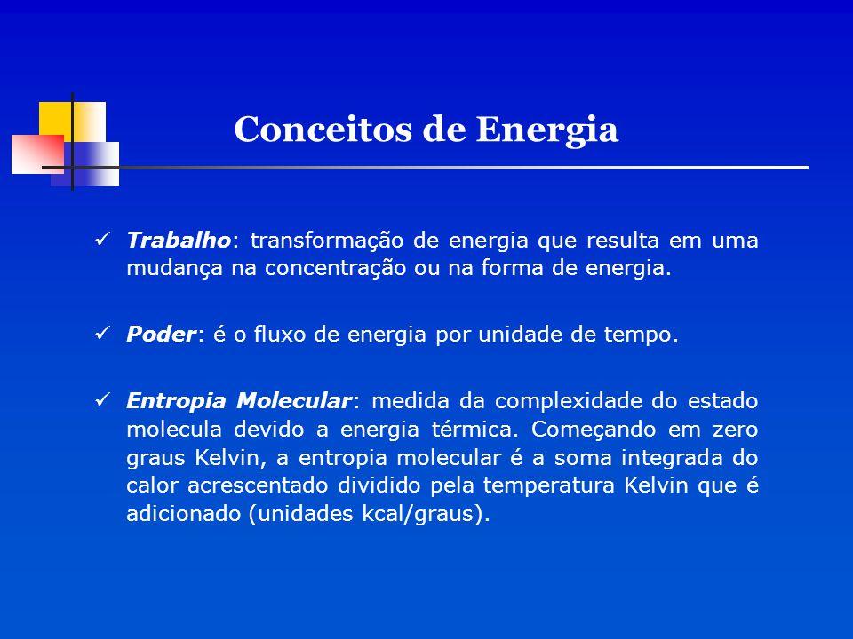 Trabalho: transformação de energia que resulta em uma mudança na concentração ou na forma de energia. Poder: é o fluxo de energia por unidade de tempo
