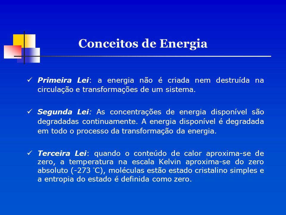 Primeira Lei: a energia não é criada nem destruída na circulação e transformações de um sistema. Segunda Lei: As concentrações de energia disponível s