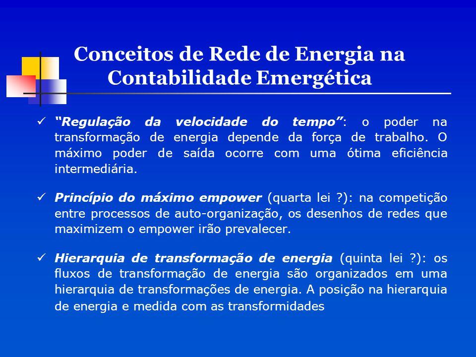 """Conceitos de Rede de Energia na Contabilidade Emergética """"Regulação da velocidade do tempo"""": o poder na transformação de energia depende da força de t"""