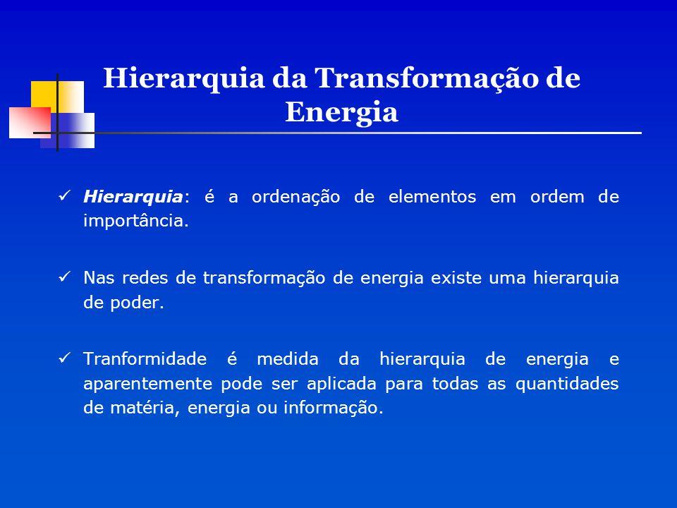 Baixa escala Alta escala Energia usada Diminui energia e aumenta transformidade Hierarquia da Transformação de Energia Rede hierárquica de transformações de energia processos que resultam da perda de energia disponível a cada transformação devido a segunda lei.