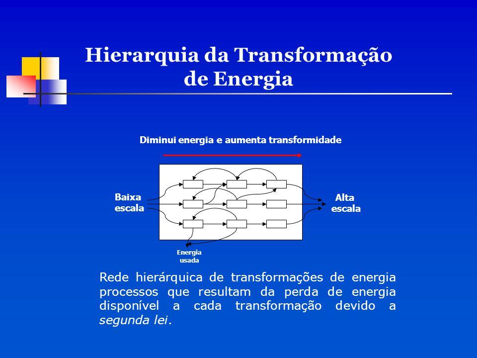Baixa escala Alta escala Energia usada Diminui energia e aumenta transformidade Hierarquia da Transformação de Energia Rede hierárquica de transformaç
