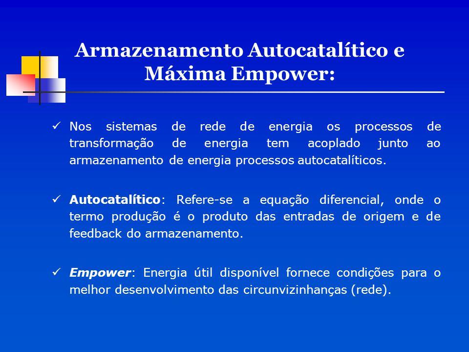 Armazenamento Autocatalítico e Máxima Empower: Nos sistemas de rede de energia os processos de transformação de energia tem acoplado junto ao armazena