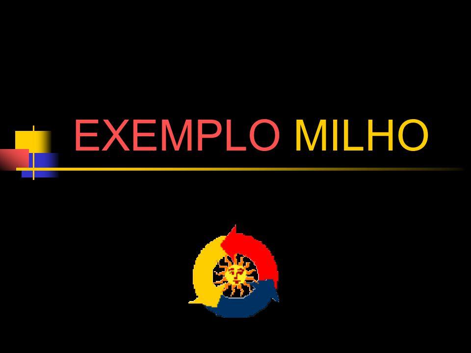 EXEMPLO MILHO