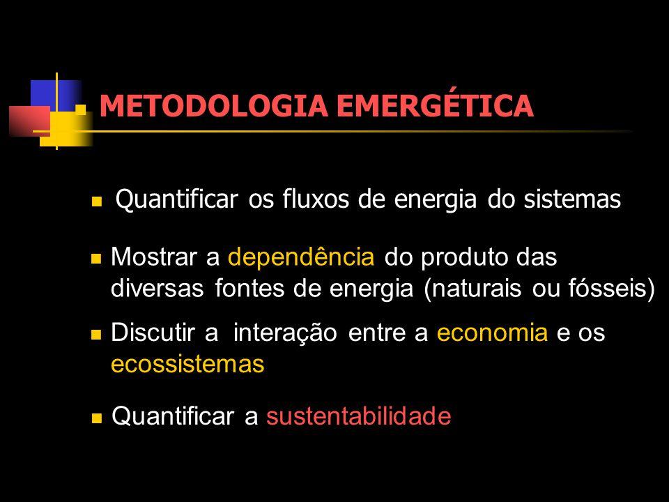 METODOLOGIA EMERGÉTICA Discutir a interação entre a economia e os ecossistemas Mostrar a dependência do produto das diversas fontes de energia (naturais ou fósseis) Quantificar a sustentabilidade Quantificar os fluxos de energia do sistemas