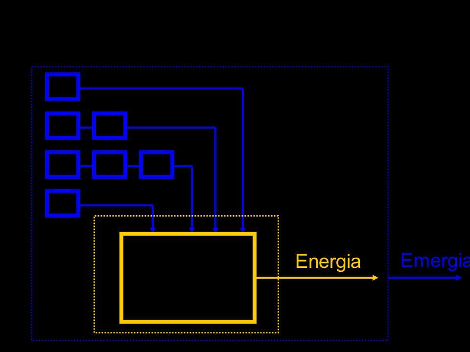 AVALIAÇÃO DE EMERGIA Realizada em três etapas: Medida dos fluxos emergéticos de entrada e das energias produzidas pelo sistema Obtenção dos índices emergéticos Interpretação dos índices emergéticos