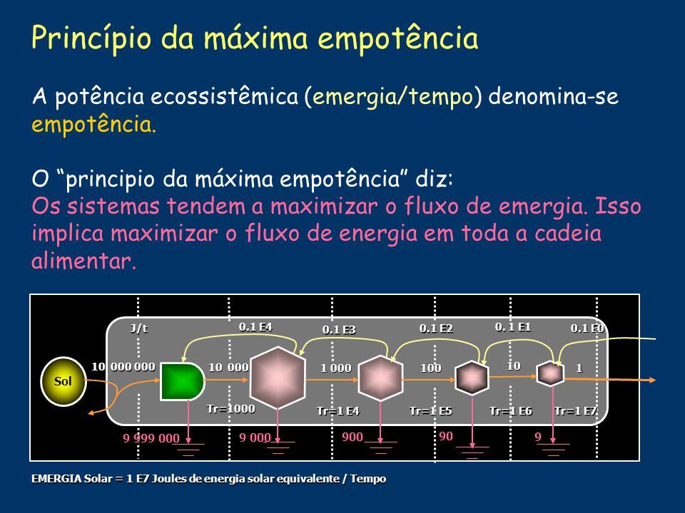 Consumidores de biomassa Energia dispersada Fontes externas Produtores de biomassa Resíduos Nutrientes Decompositores Energia disponível na área Energia incorporada/Energia de cada etapa Transformidade 1 000 J 1 000 000 Joules de energia solar (sej) 1 000 000 J 100 J10 J 1 J0 J 1 000 sej/J Energia disponível em cada etapa 1 000 J 100 J 10 J1 J 10 000 sej/J 100 000 sej/J 1000 000 sej/J