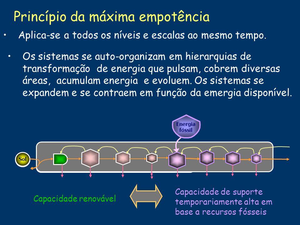 Princípio da máxima empotência A potência ecossistêmica (emergia/tempo) denomina-se empotência.