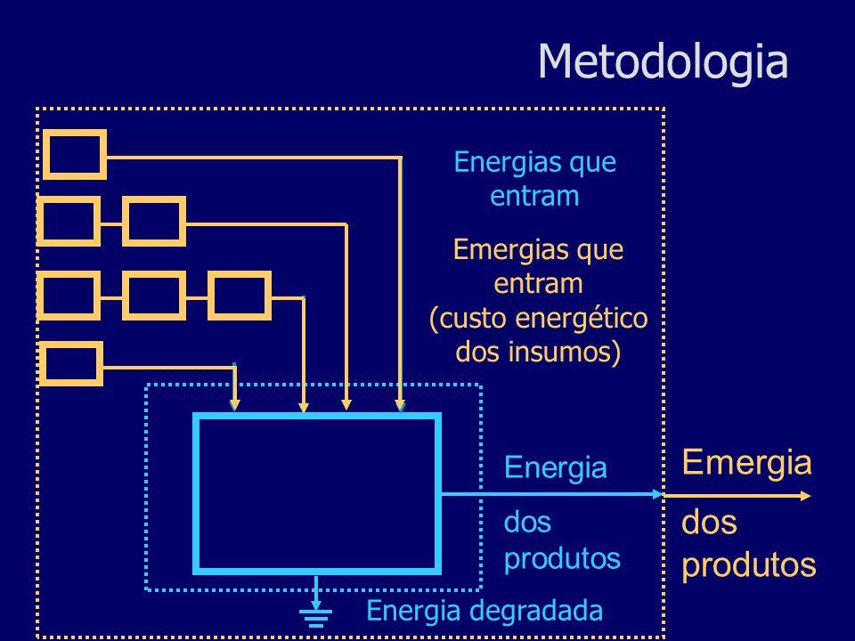 É definida como toda a energia incorporada na produção de um recurso, seja ela na forma de energia ou matéria, trabalho humano ou da Natureza, em outras palavras, é toda a energia necessária para um sistema produzir um recurso (Odum, 1996).