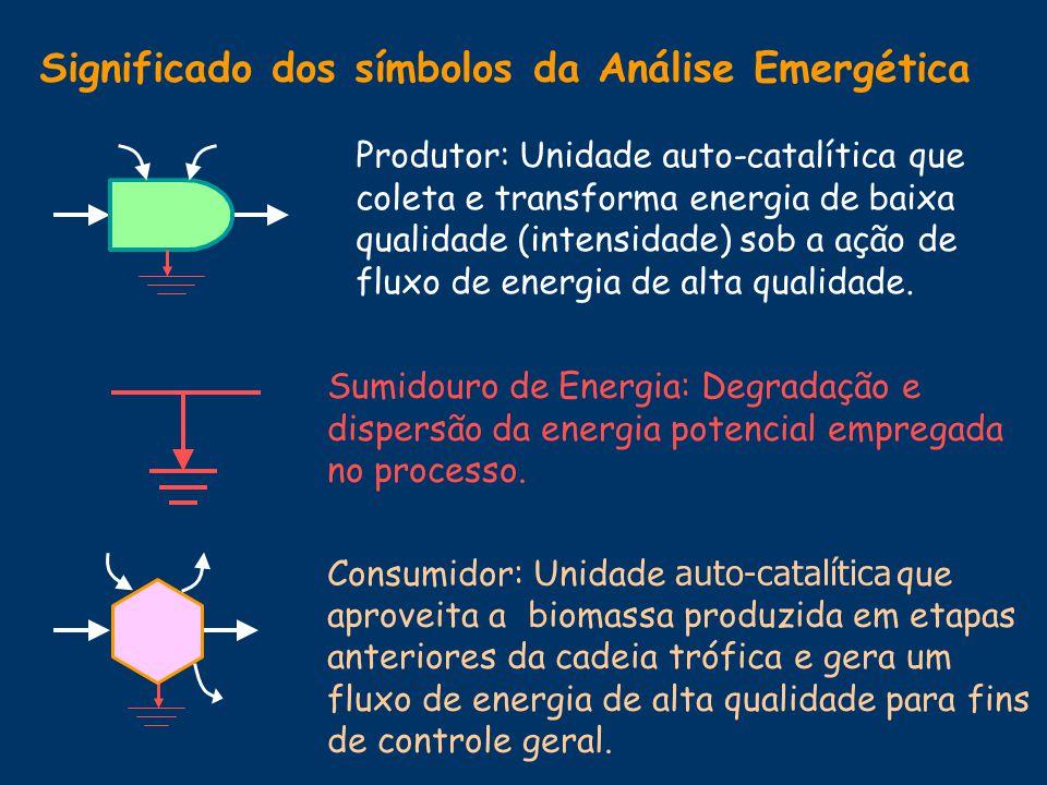 Significado dos símbolos da Análise Emergética Interação: p rocesso de transformação de energia potencial que exige a participação de varias formas de energia.